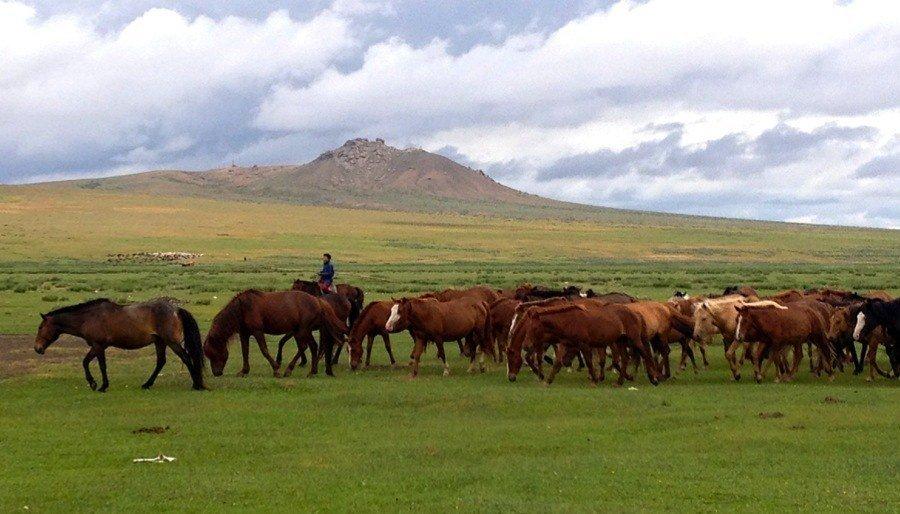 Il nomadismo moderno: élite moderne che lavorano e vivono ovunque desiderino